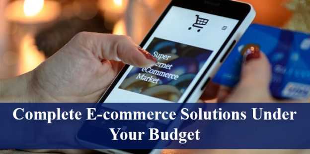 Complete E-commerce Solutions Under Your Budget