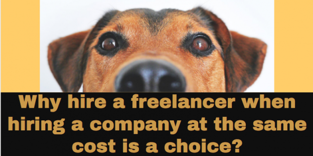 Why hire a freelancer when hiring a company at the same cost is a choice?