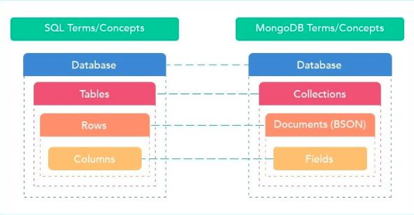 The database System: MongoDB