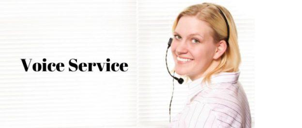 Voice Service