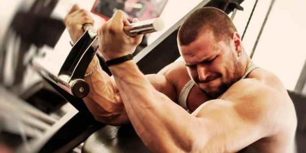 11 Best Bodybuilding Workout Apps in 2021
