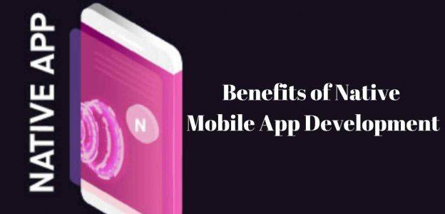6 Major Benefits of Native Mobile App Development