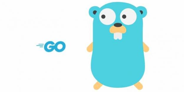 Top 10 IDEs and Tools for Golang Development – Worth Your Attention